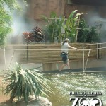 CAS Music designed and installed the outdoor soundscape at the Philadelphia Zoo, Philadelphia, PA.